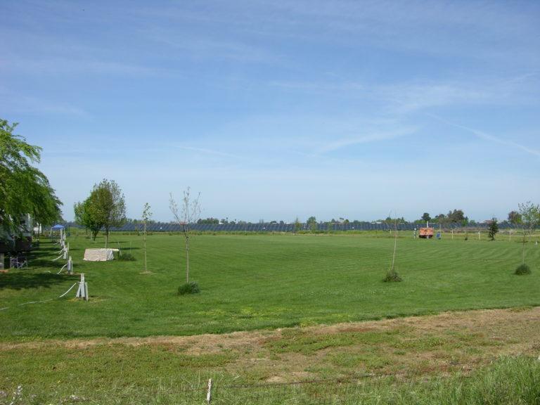 Back Lawn 2 acre field