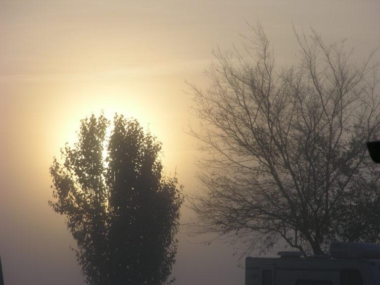Foggy morning at WAG