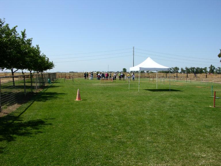 Adjacent lawn seminar
