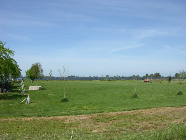 Back Lawn 2 acre field