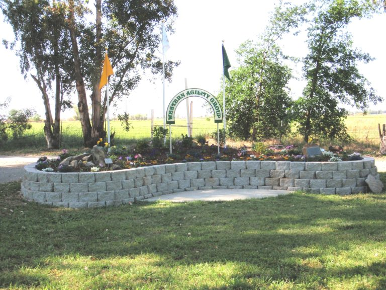 Celebration garden beginning